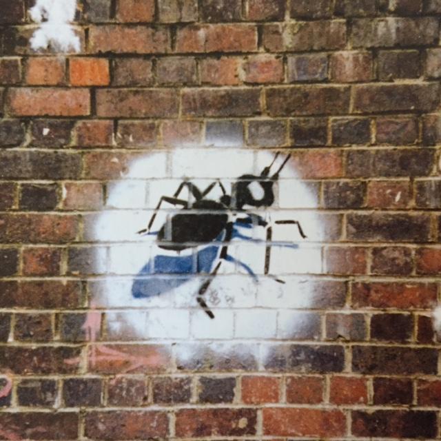 1996 - SA - UK - Bristol - Windmill Hill - First stencil - ant - HSH p62