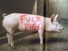 2003:07 - SA - Turf war - Fuck pigs - Wall and piece p154