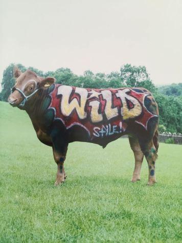 2003:07 - SA - Turf war - Wild style - Wall and piece p153