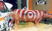 2003:07:18 - Original - Live Cow with red circles - Turf war