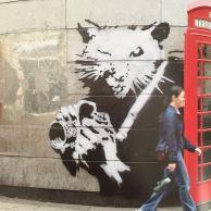 2005 - SA - UK - London - Rat w camera - Wall and piece p108