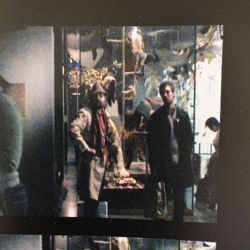 Banksy at Natural History Museum, New York