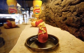 2008:10 - Original - The village pet store - Hot dog - Getty