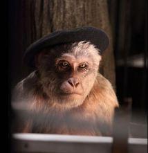 2009:7 - Original - Animatronic - BvBM- Chimp artist - unknown source